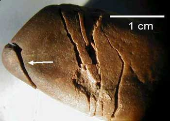shock spall and spallation fractures, quartzite cobble, Azuara Rubielos de la Cérida impact structures