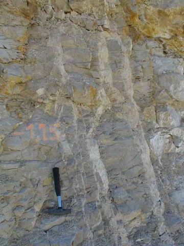endogenetic geologic interpretation of impact breccia dikes