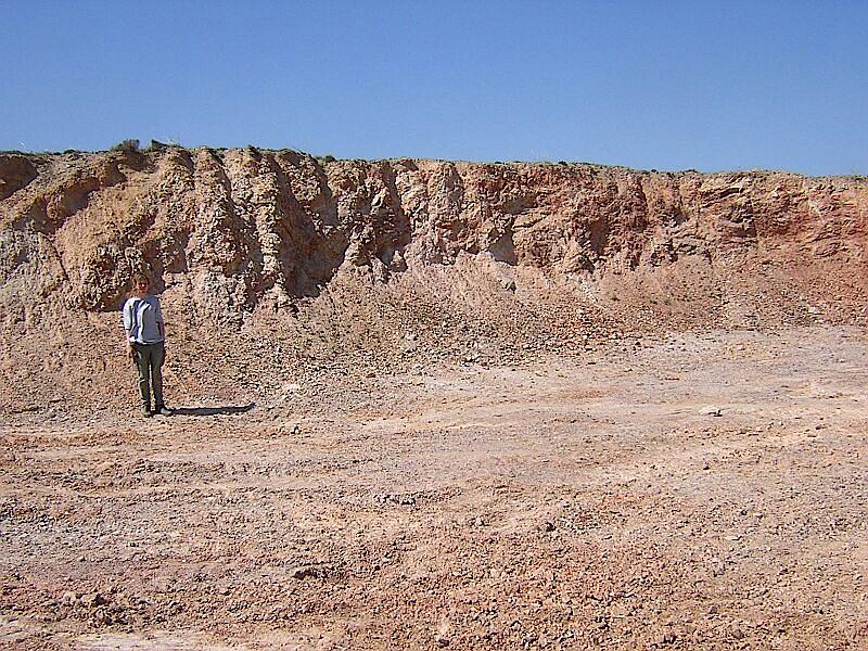 monomictic impact breccia, quarry near Lagueruela, Azuara impact structure