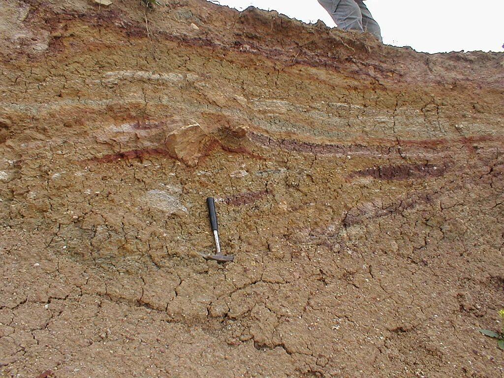 Ries impact crater, Bunte breccia ejecta, flow texture, Ronheim quarry