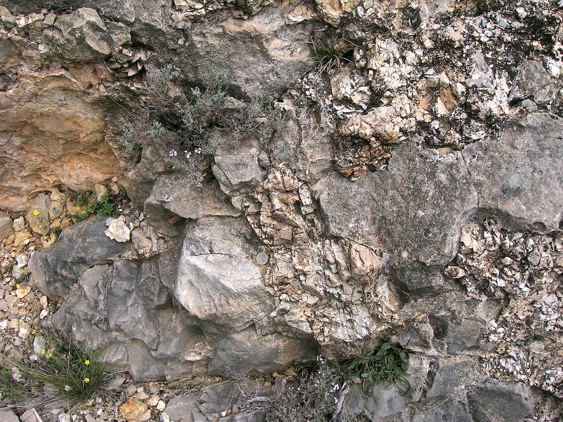 heavily shattered chert (silex) nodules in limestone, Rubielos de la Cérida impact basin
