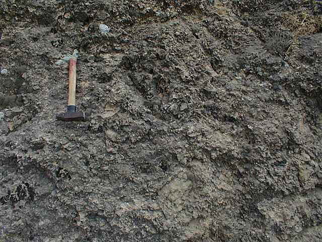monomictic impact breccia, limestone, Cucalón, Azuara impact structure