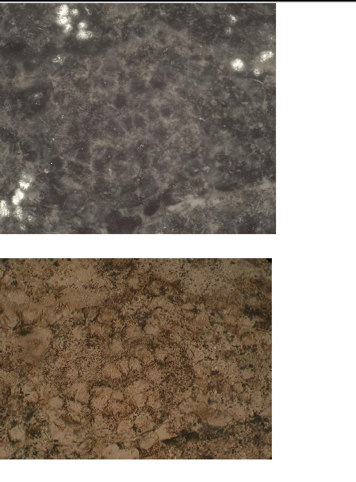 diaplectic quartz saarland impact