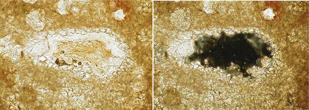 glass particle in suevite, photomicrograph, Cucalón deposit, Azuara impact structure
