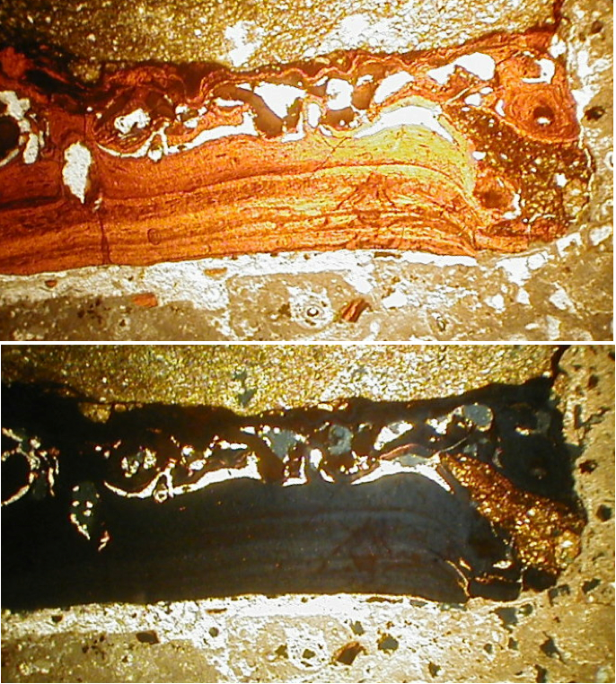 photomicrograph of impact melt glass, strongly shocked polymictic breccia, Azuara impact structure