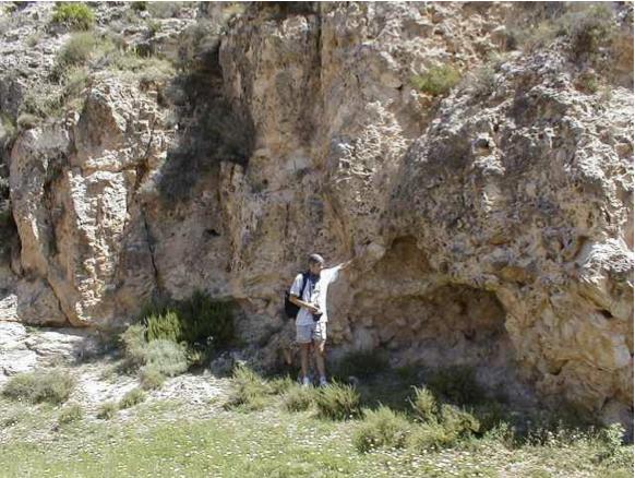 azuara impact, cortes de Tajuña formation, Moneva 1