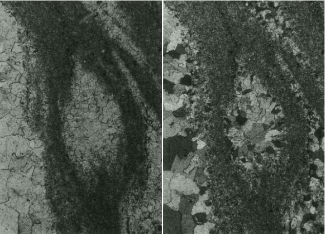 megabreccia Azuara impact structure, megabreccia, cataclastic flow, photomicrograph, Belchite