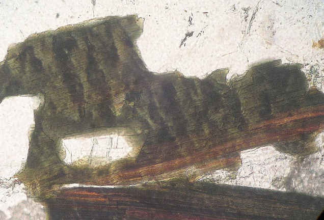 photomicrograph kinked mica, Chiemgau impact