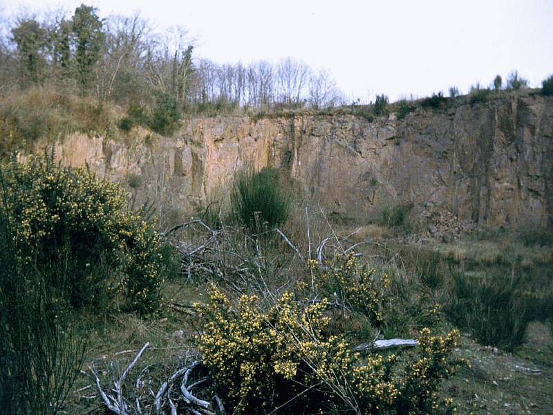 suevite disused quarry, Montoume, Rochechouart impact structure, France
