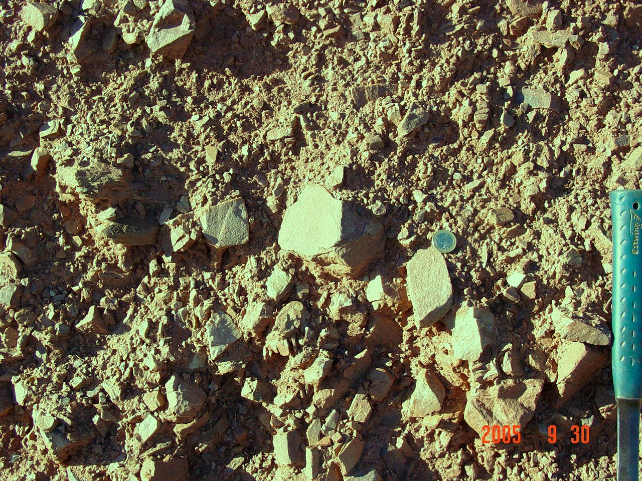 detail of the Pelarda Fm. ejecta diamictic facies, Azuara impact