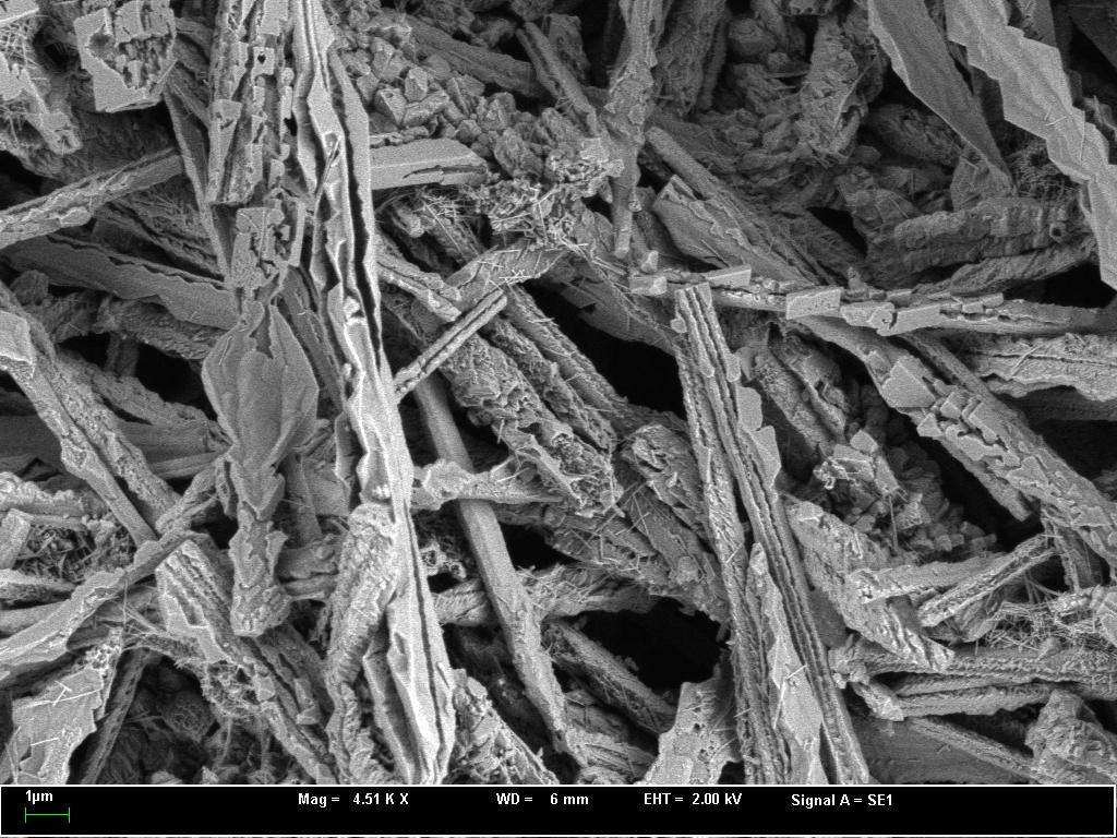 SEM image carbonate melt dendritic texture Rubielos de la Cérida impact