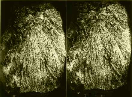 stereo image of a shatter cone, Azuara impact structure