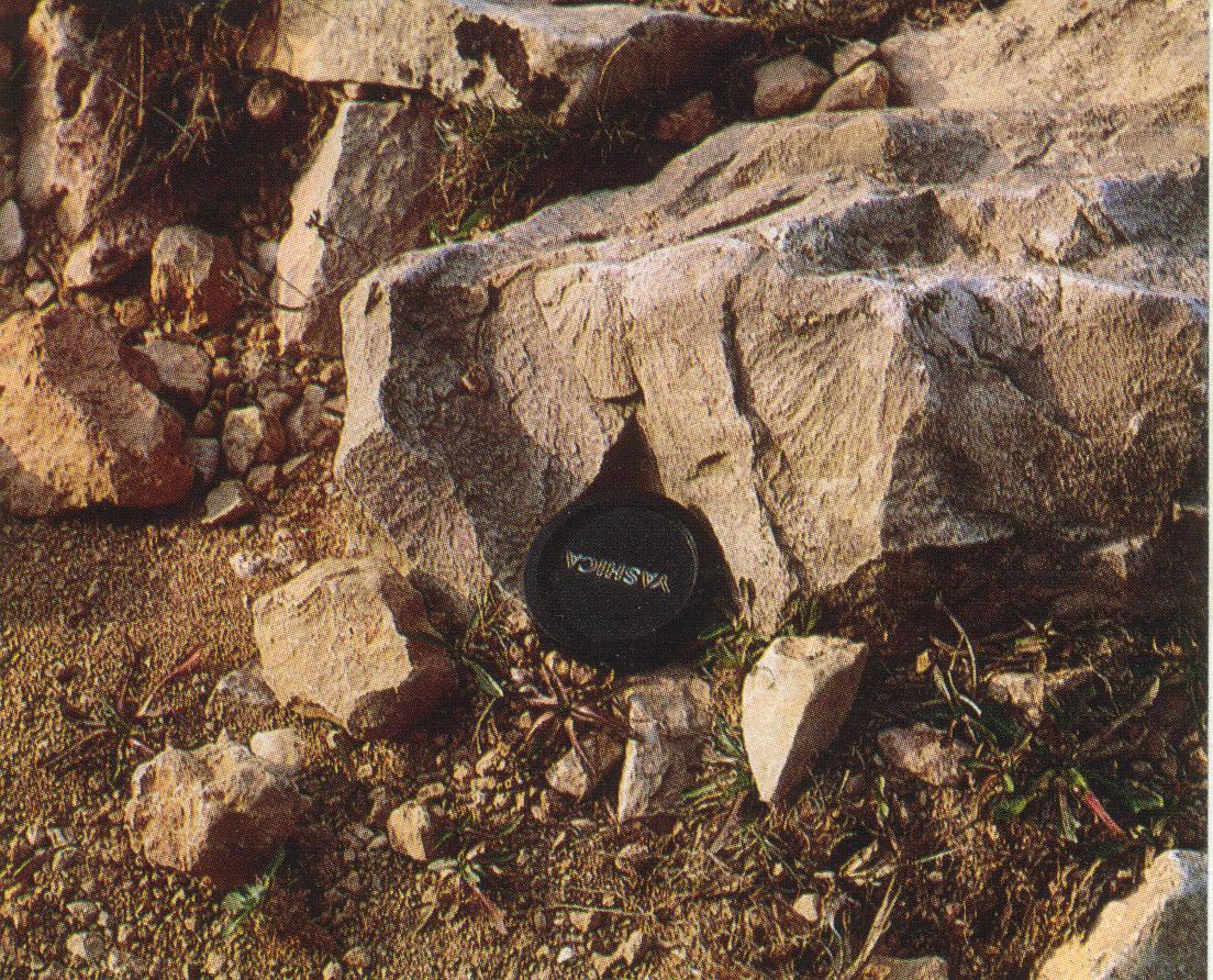shatter cones in Jurassic limestones, quarry near Muniesa, Azuara impact