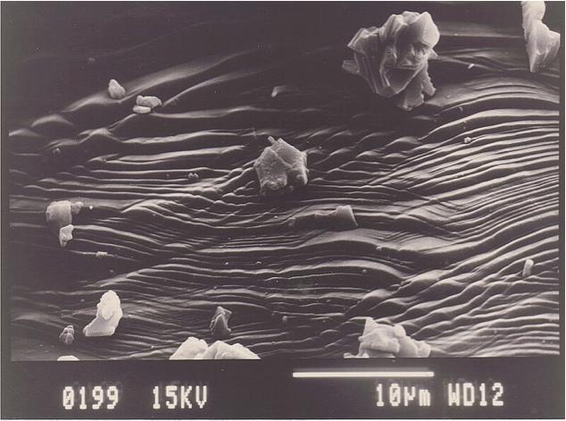 SEM image of planar deformation features, quartz, Azuara shock