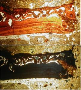 Azuara-impact-shock-melt