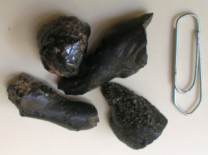 tektite-like-glasses-Chiemgau-impact