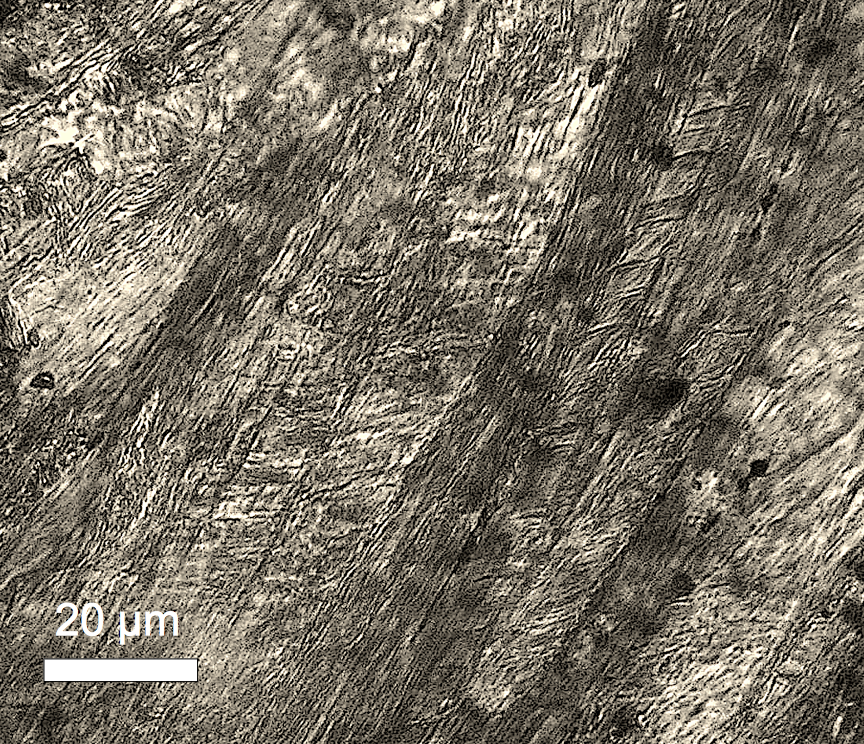 shock metamorphism in calcite planar features microtwins
