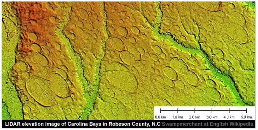 Predominant morphology in the Carolina Bays
