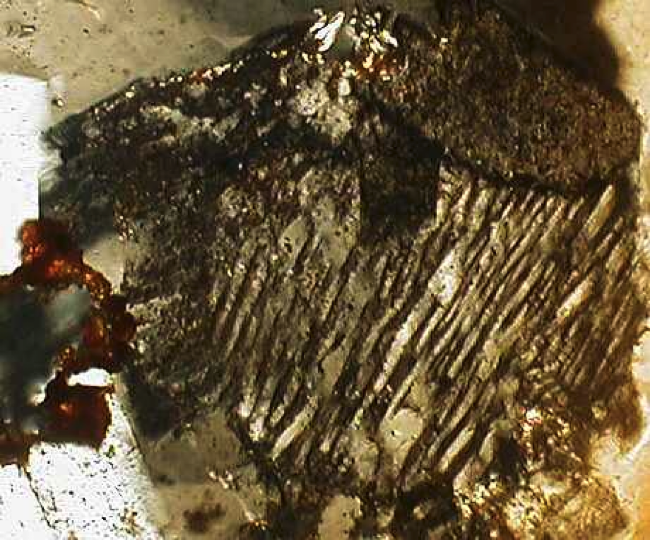 impact diaplectic glass feldspar twin lamellae