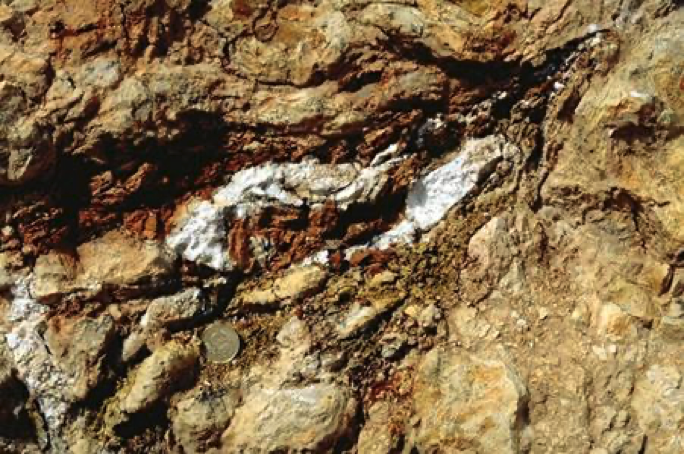carbonate-phospate shock melt